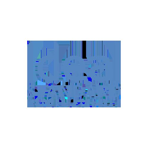 Logo_Ideal