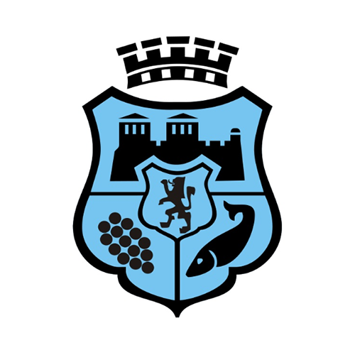 Logo_VIdin
